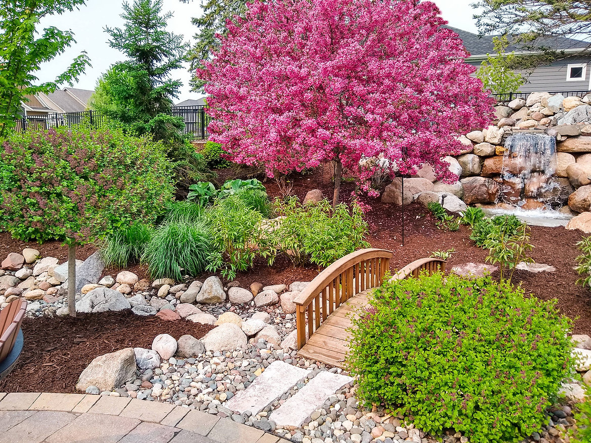 home landscape with bridge, a pink flowering tree, shrubs, a waterfall, and brown mulch