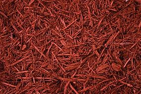 Red Canyon Shredded.jpg