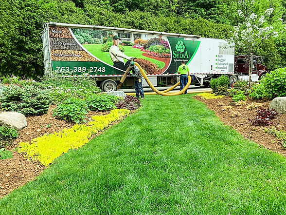 home landscape with grass and blown in installation of mulch around shrubs