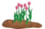 mulch&flowers.tif