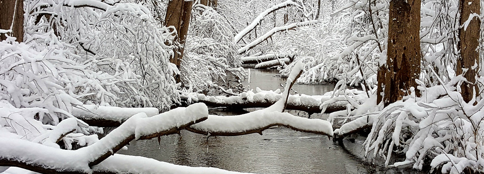 fresh snow across the creek