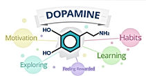 dopamine 2.jpg