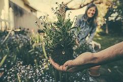jardinage 2.jpg