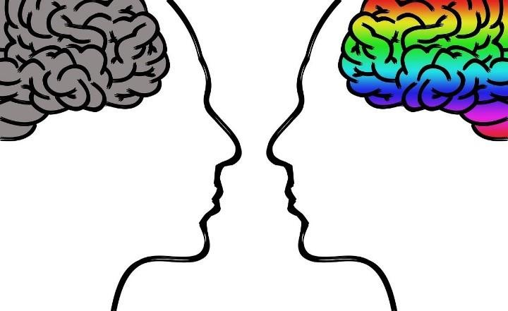 cerveau . neuroscience . déclin cognitif