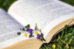 livre fleur.jpg