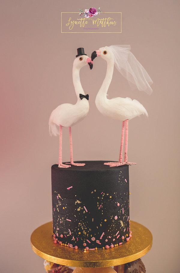 flamingo cake, lynette matthews photography