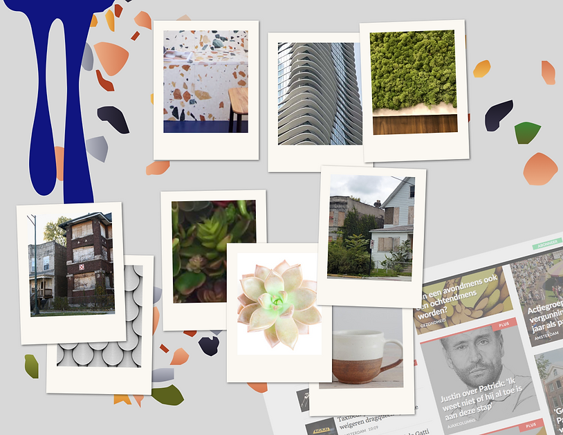 City nature hip moodboard.png