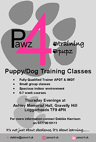Puppy Class  advert A5-page-001.jpg