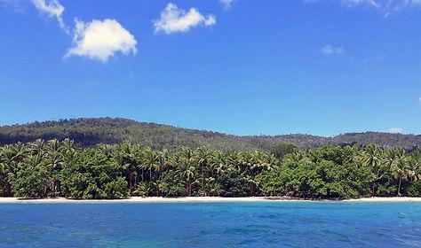 タラウディオンビーチのココナッツ