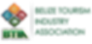 btia logo.png