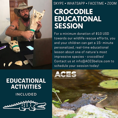 Crocodile%20educational%20session_edited