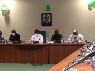 Climate Parliament group in Nigeria