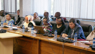 Our workshop at the Pan-African Parliament