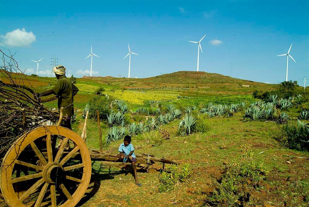 Lovely windfarms in a lovely field
