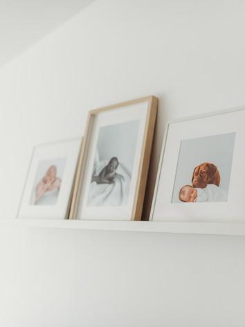 henley photography studio