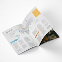 Relatório Anual de Atividades SENAI - SESI IEL