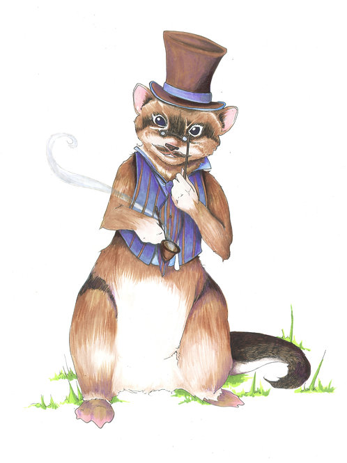 Kingsley, Gentleman Ferret