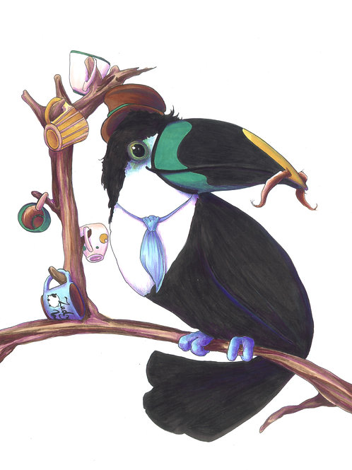 Phillippe, Gentleman Toucan
