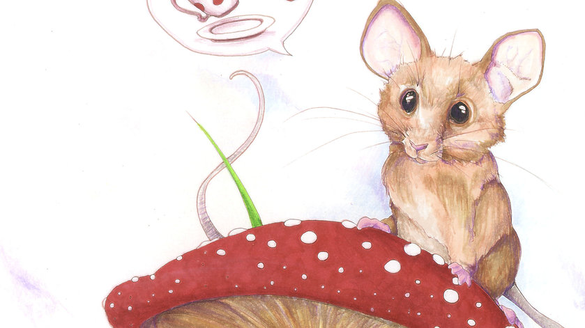 An adorable field mouse looking at the viewer from the top of a red mushroom.