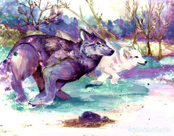 FishWithATopHat - Spatter Wolves