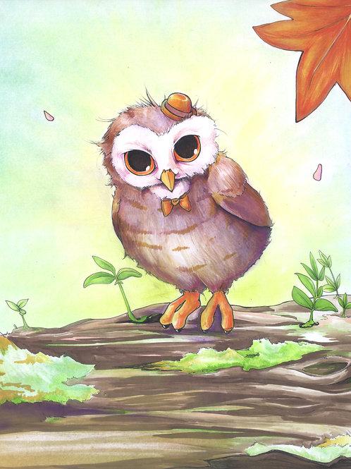Hadrian, Gentleman Owl