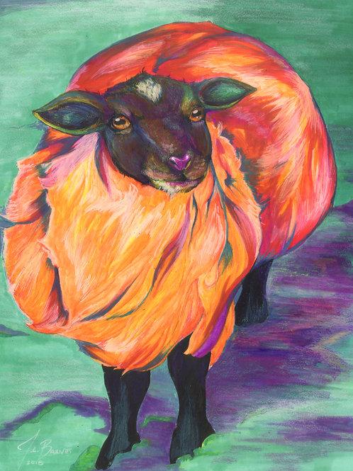 Florescent Sheep