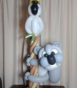 Koala & Cockatoo