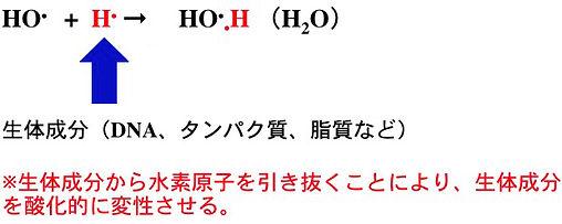 活性酸素.jpg