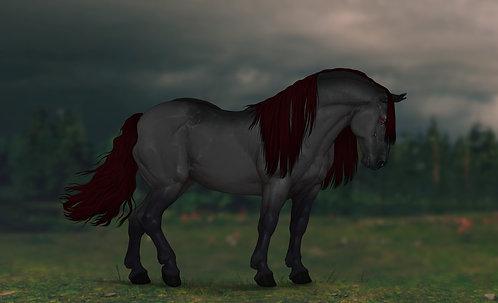 Adopt Horse (78 arts)