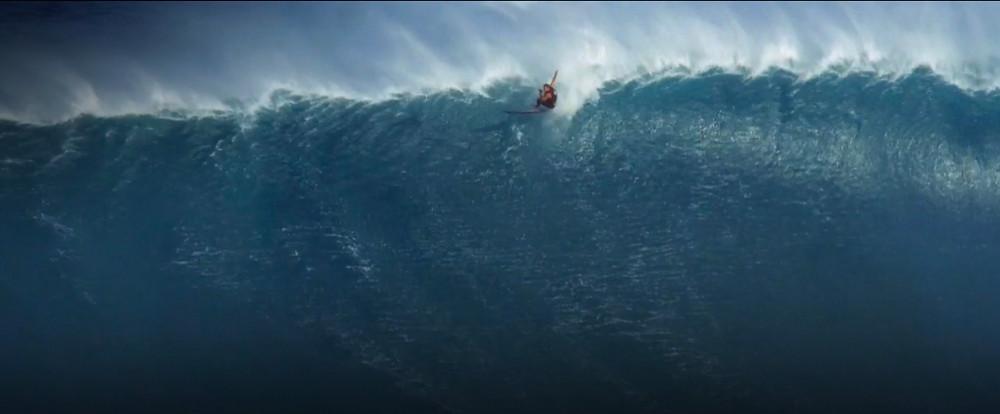 King Penguin Friday Five 100 Foot Wave