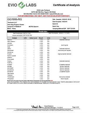 GG1906-RG pg 4