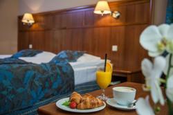 Hotel Farmona Business & Spa (9)