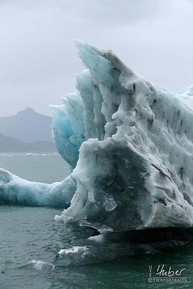 schwimmender Gletscherbrocken