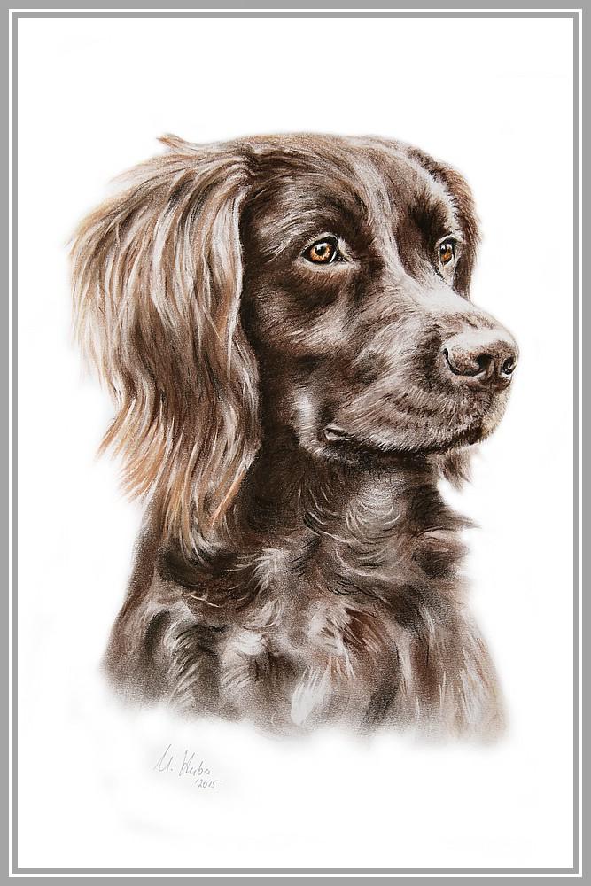 Pastellzeichnung  Hund