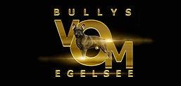 Logo Bullys vom Egelsee 2.jpg