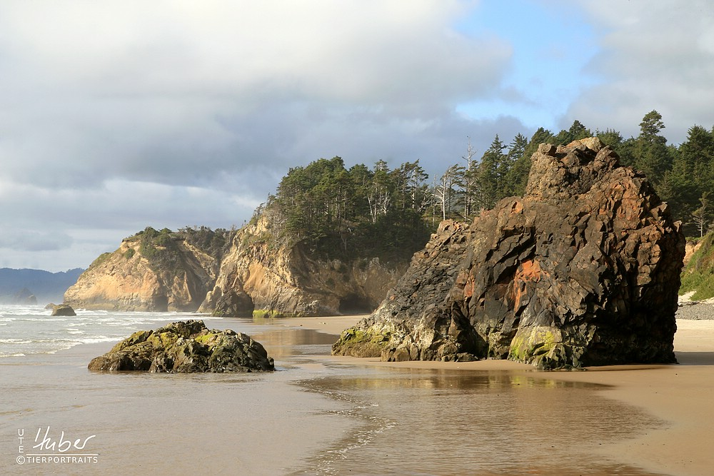 Oregons wunderschöne Küste