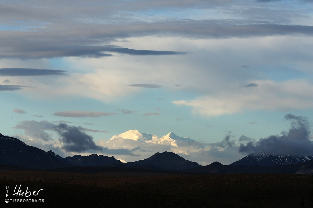 Mount Denali (Mc Kinley)
