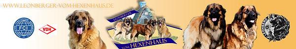 Banner Leos vom Hexenhaus.jpg