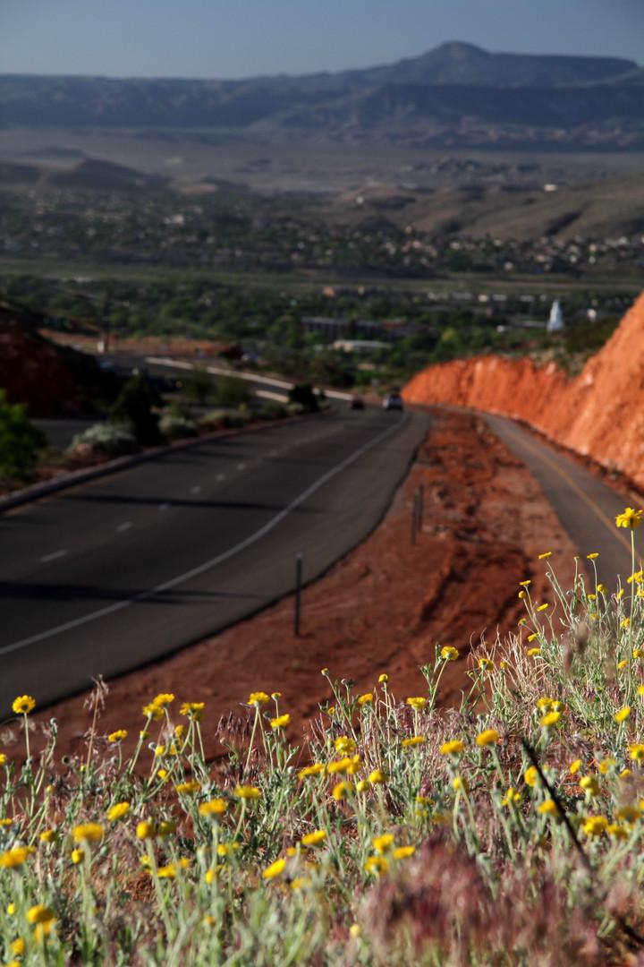 Red Hills Parkway 33.jpg