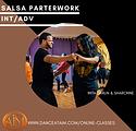 salsa partner.png