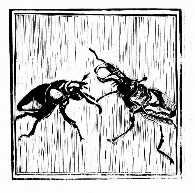 Stag Beetles: Lino Cut