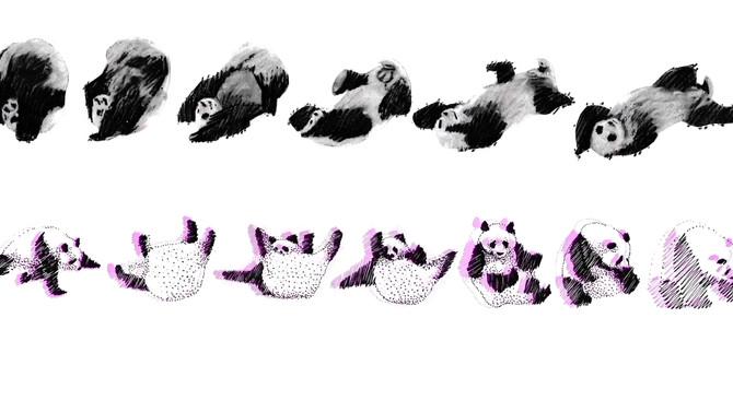 drawing hundreds of pandas
