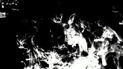 microscopic imagery 1