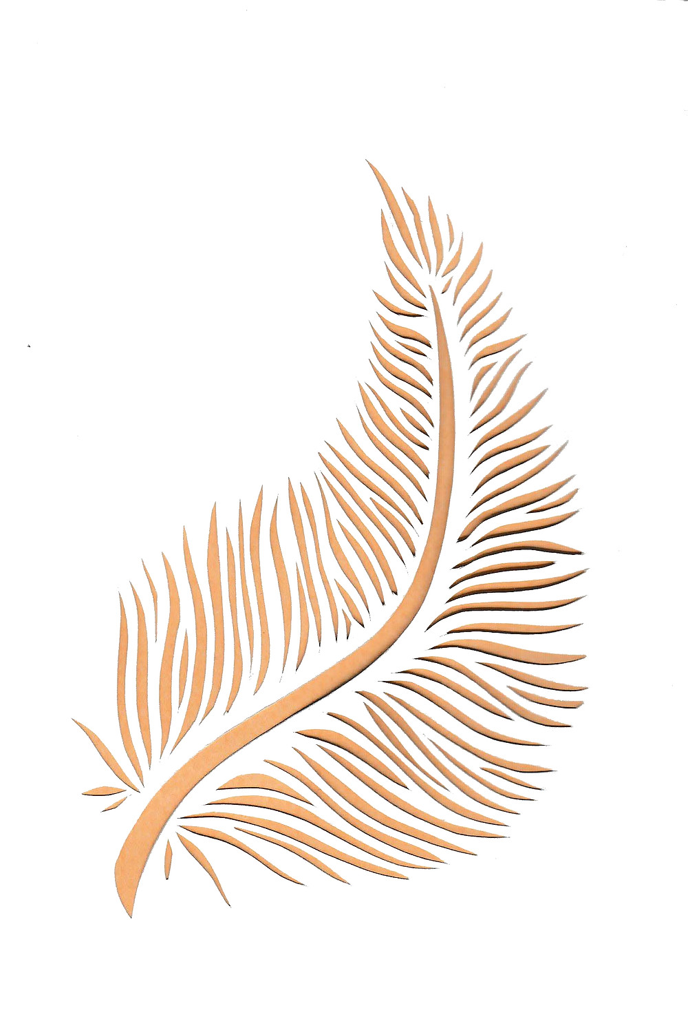 feather paper cut illustration