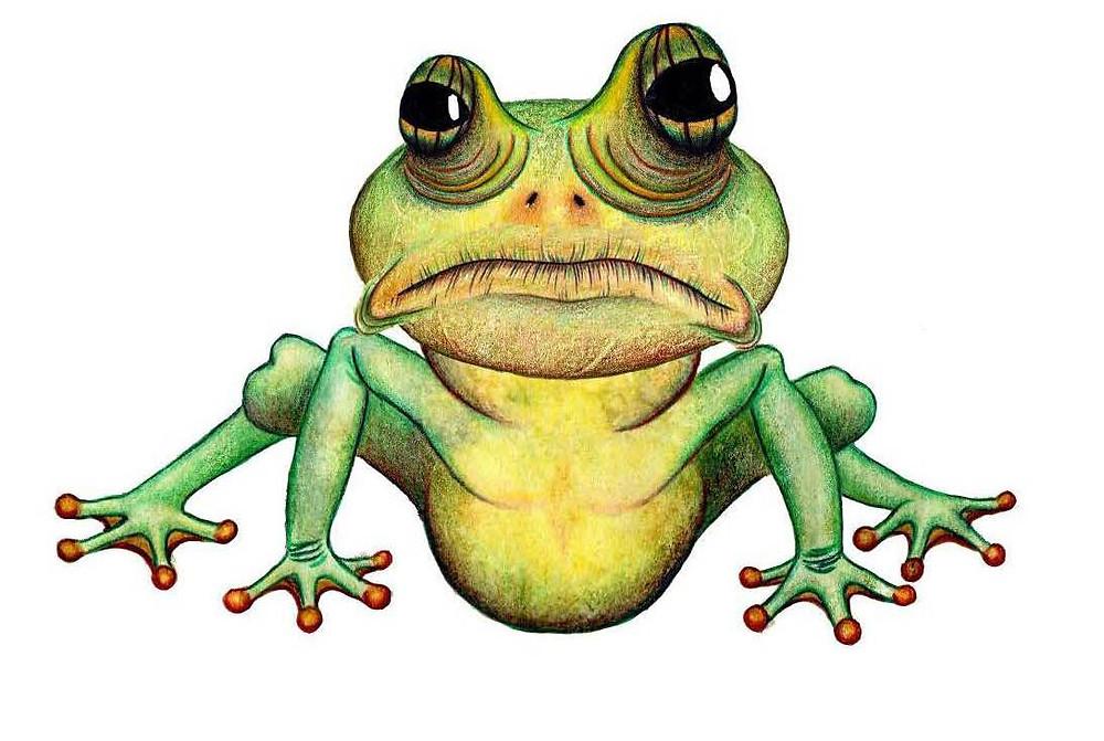 final frog character