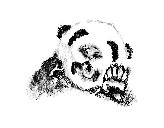 test tube pandas