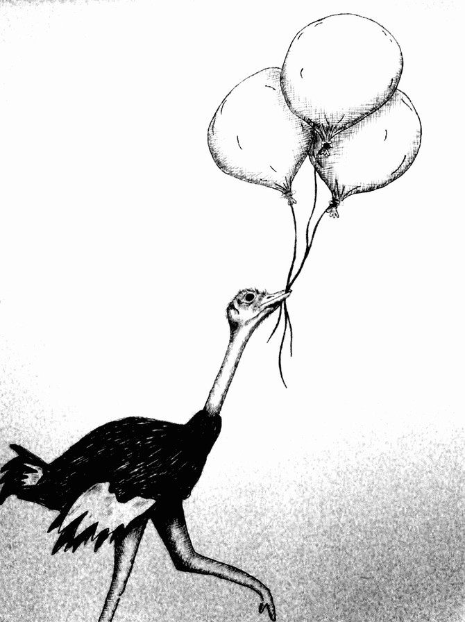 The Ostrich Wanted to Fly So I Gave Him Balloons