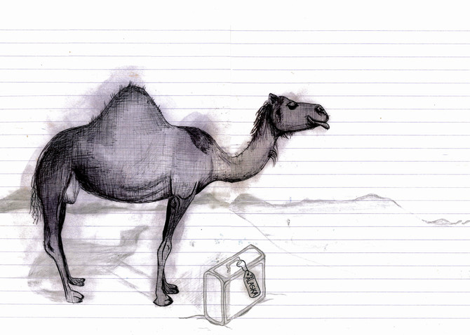 where would a camel go on holiday?