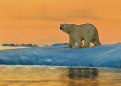 Svalbard 4.jpg