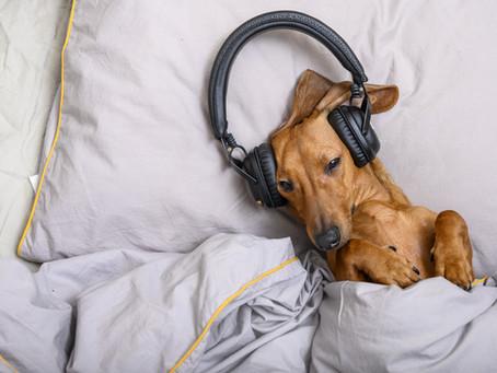 A link between sleep & hearing loss?